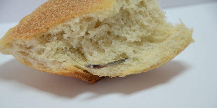 Ekmeğin içinden fare kuyruğu çıktı