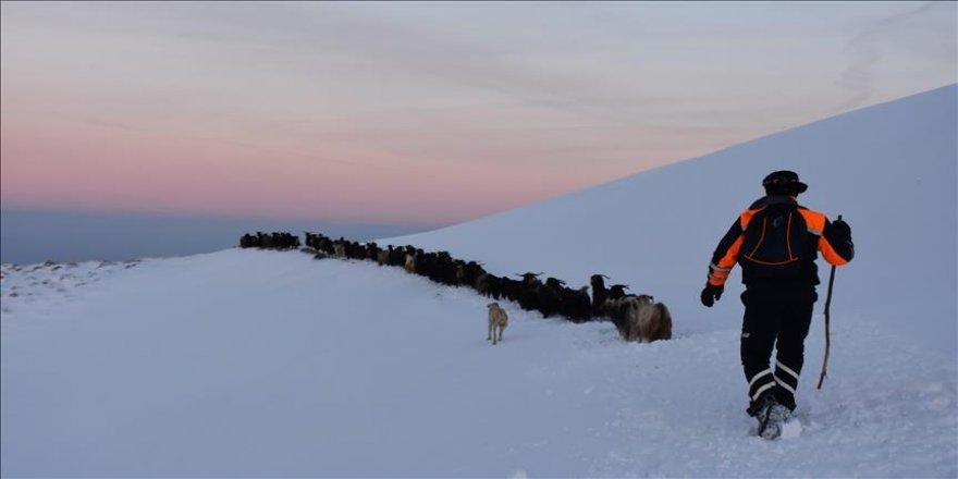 Karda mahsur kalan 15 çoban kurtarıldı