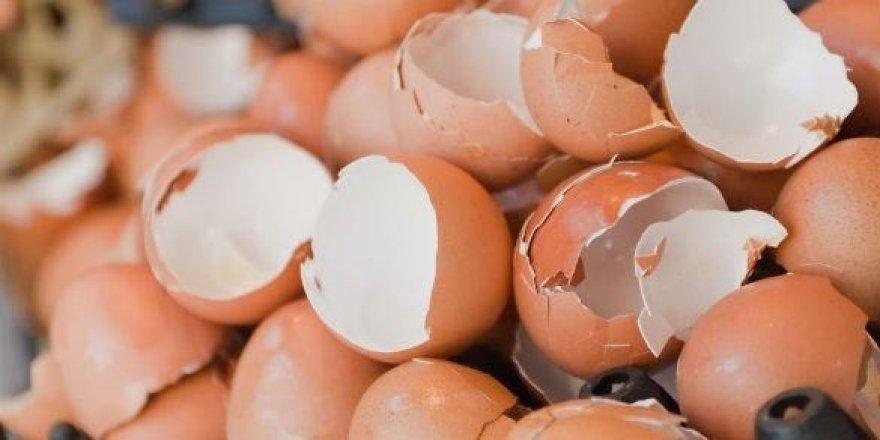 Yumurta kabuğu mucizesi