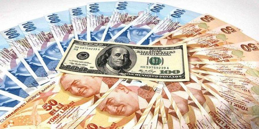 Doların panzehri yerel para