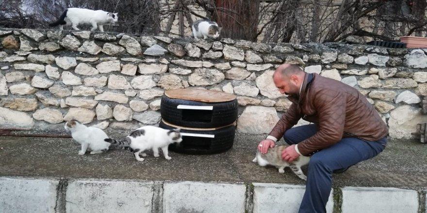 Kediler üşümesin diye lastikten kedi evi yaptı