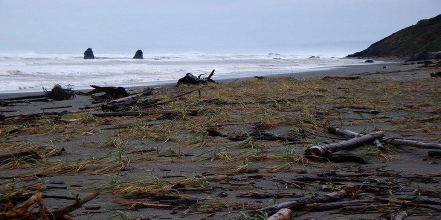 Büyük tehlike bekleniyor: Plajlar kaybolabilir