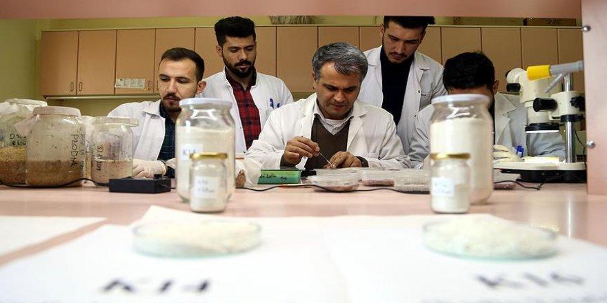 Topraktan böcek ilacı geliştirdiler