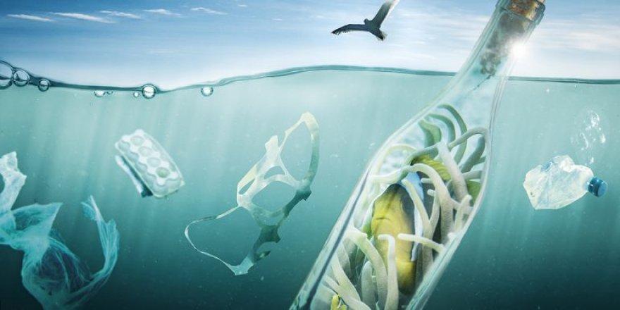 Plastik yiyoruz