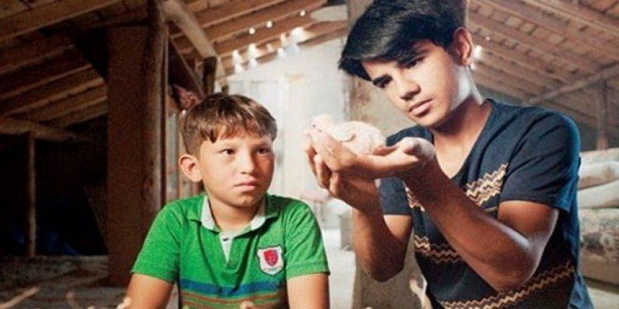 Güvercin hırsızları Dakka'da yarışacak