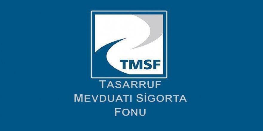 TMSF'ye geçen 'sorunlu şirketler' satılacak