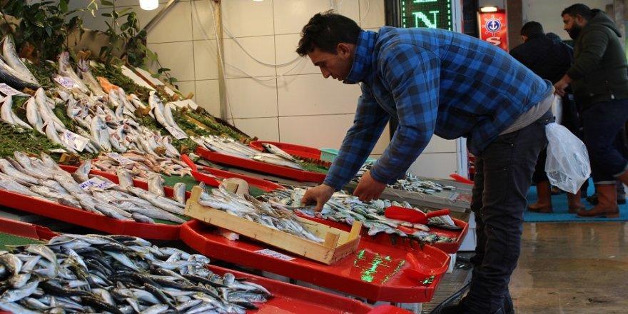 Kocaeli'de balık fiyatları cep yakıyor