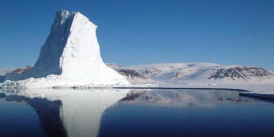 Buzulların altından 40 bin yıllık bitki fosilleri çıktı