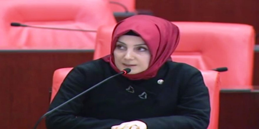 "Milletvekili Ayvazoğlu: ""Bizde sene hep 2011"""