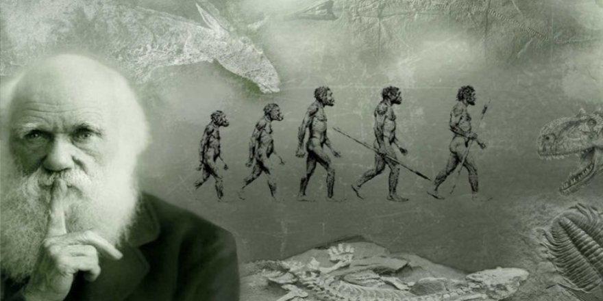 Akademisyenler: Darwin'in teorisi yeniden incelensin