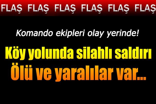 Şırnak'ta köy yolunda silahlı saldırı: 1 ölü