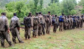 Raporlar Ortaya Çıktı! PKK O Ülkeye Kaçıyor