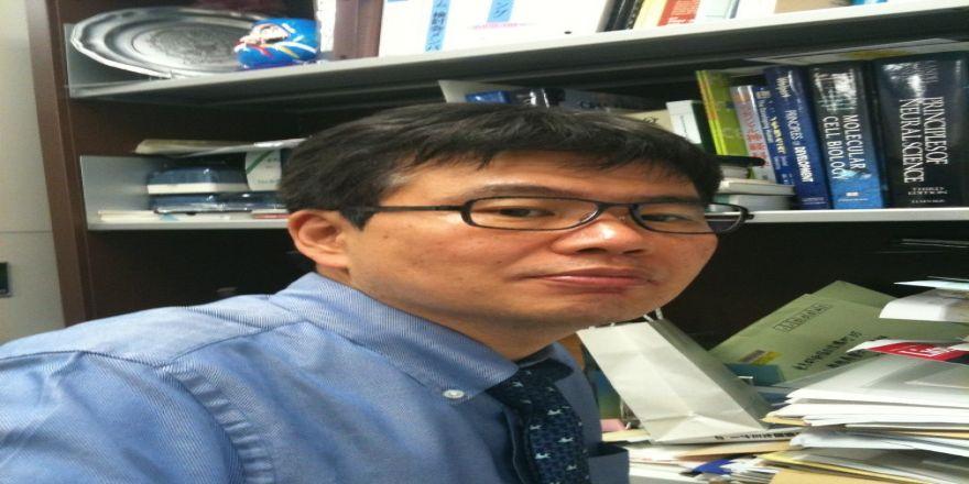 Japonya'dan omurilik zedelenmesine umut olacak çalışma