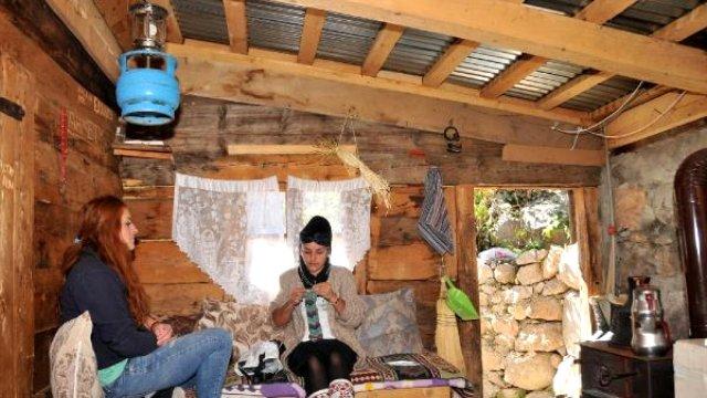 Yaylada Yaşayan Aile Evlerine Elektrik Bağlatmıyor