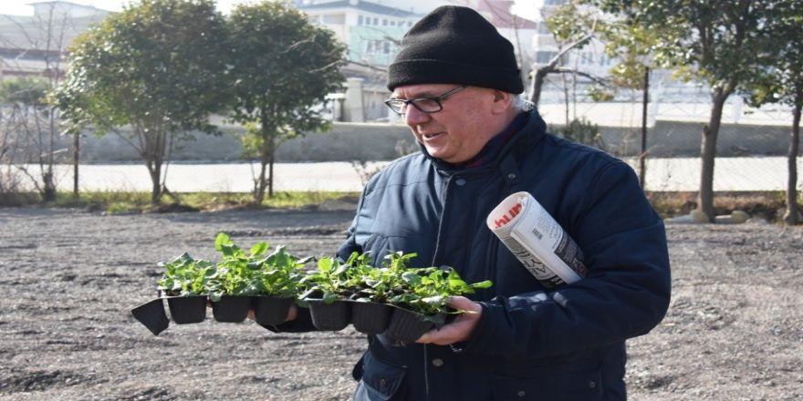 Ücretsiz fidan ve çiçek dağıtımına yoğun ilgi