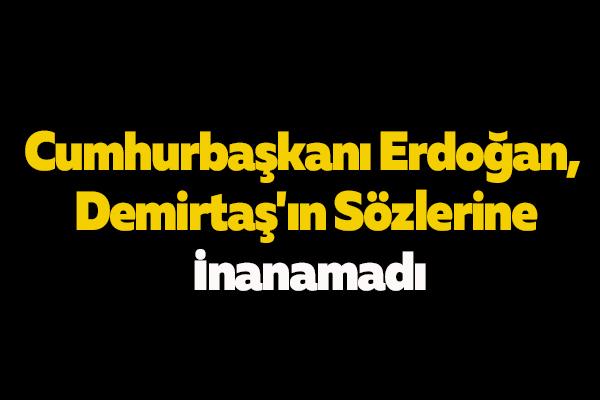 Cumhurbaşkanı Erdoğan, Demirtaş'ın Sözlerine İnanamadı