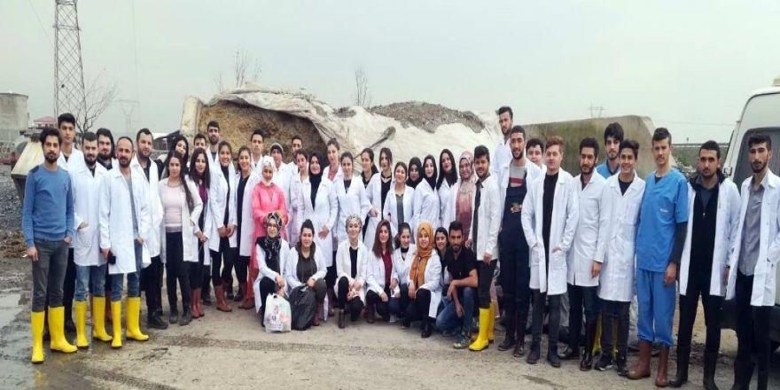 Gaün Veteriner Bölümü Öğrencileri Sahaya İndi