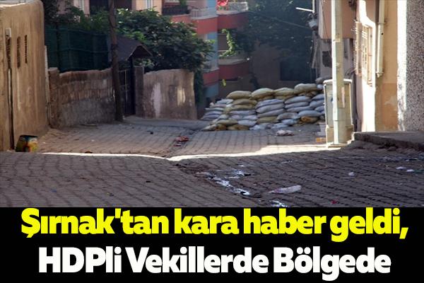 Şırnak'tan kara haber,HDPli Vekillerde Bölgede