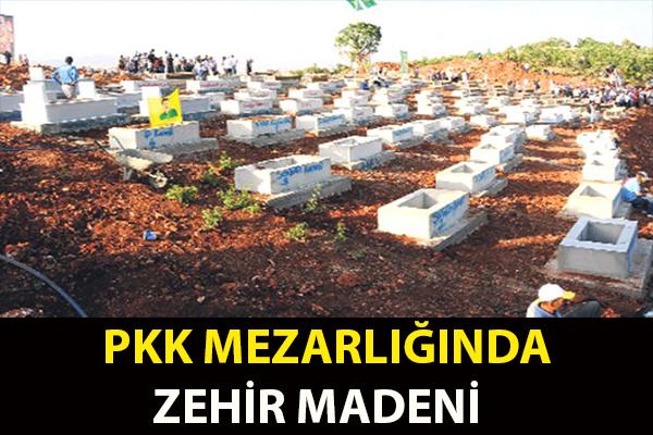 PKK MEZARLIĞINDA ZEHİR MADENİ