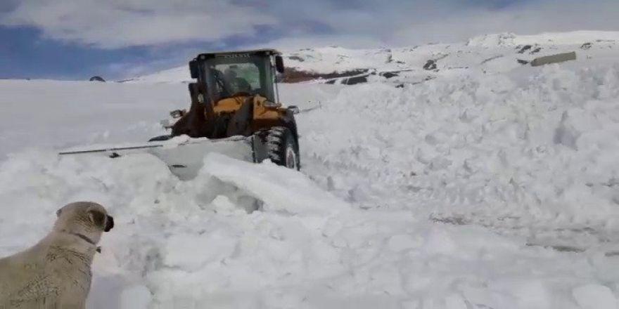 Kar Kalınlığı 7 Metreyi Buldu