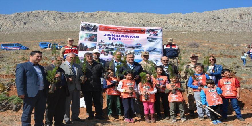 Elbistan'da Şehitler Ormanına 800 Fidan Dikildi