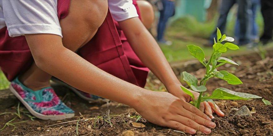 'Ağaç Kardeşliği' 23 bin çocuğa ulaştı