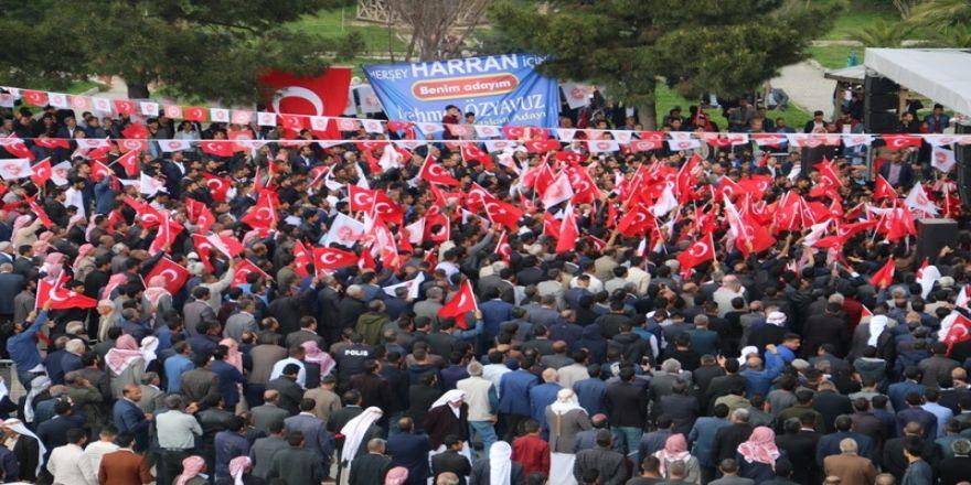 Harran'da Özyavuz'a Tam Destek
