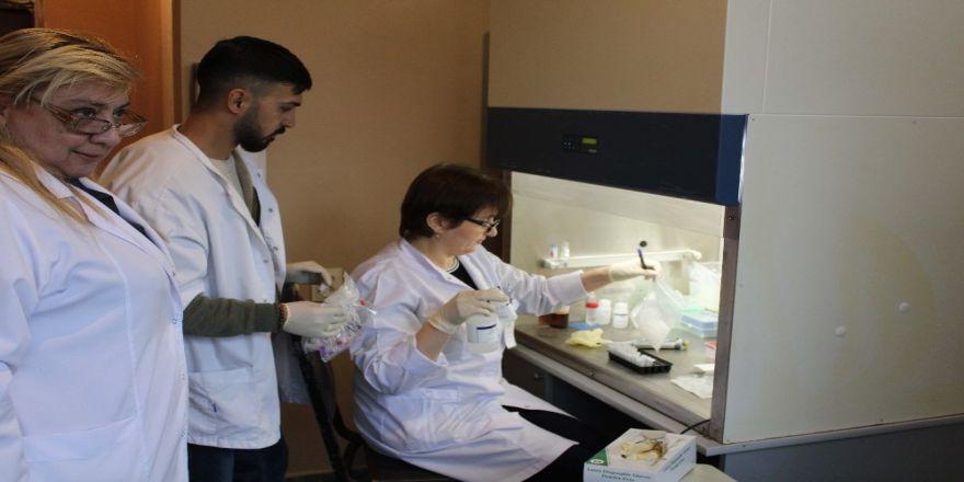 Tika'dan Gürcistan'da Sağlık Personeline Eğitim