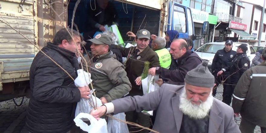 Erzurum'da Orman Bölge Müdürlüğü Berat Kandili Dolayısıyla Ücretsiz Fidan Dağıtımı Yaptı