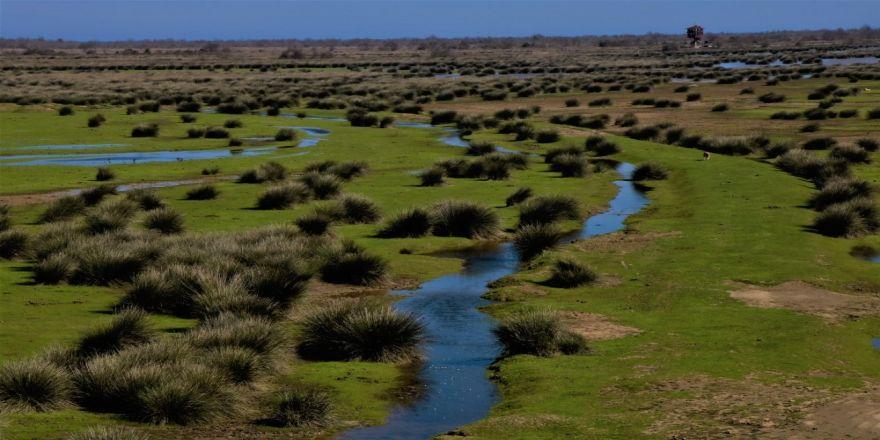 Turistlerin Kuş Cenneti'nde kalması hedefleniyor