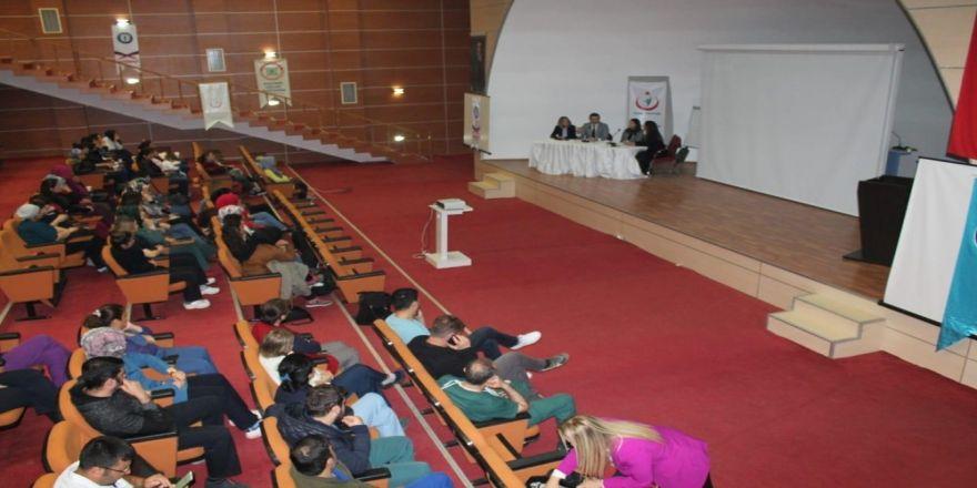 Mardin'de Ana Karnından Ana Kucağına Projesi
