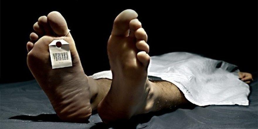 En fazla ölüm dolaşım sistemi hastalığından