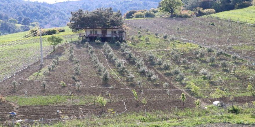 Bahar Geldi Çiftçilerin Yoğun Mesaisi Başladı