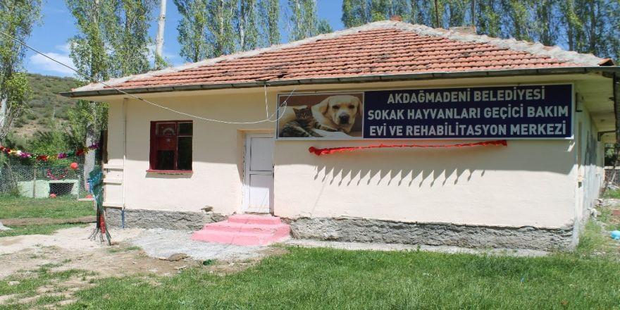 Akdağmadeni'nde Sokak Hayvanlarına Bakım Evi Açıldı