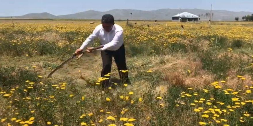 Çelebi'den, 14 Mayıs Dünya Çiftçiler Günü mesajı
