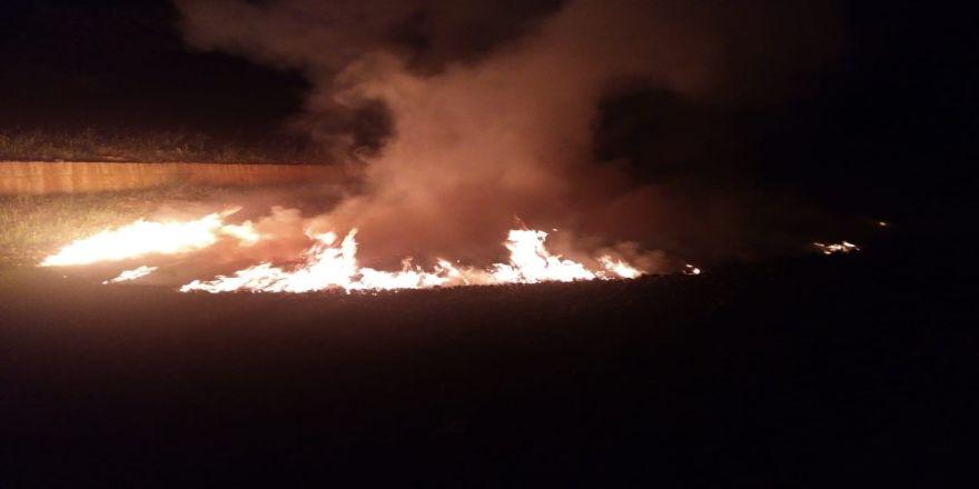 Orman Deposu Yangınında Kozalaklar Zarar Gördü