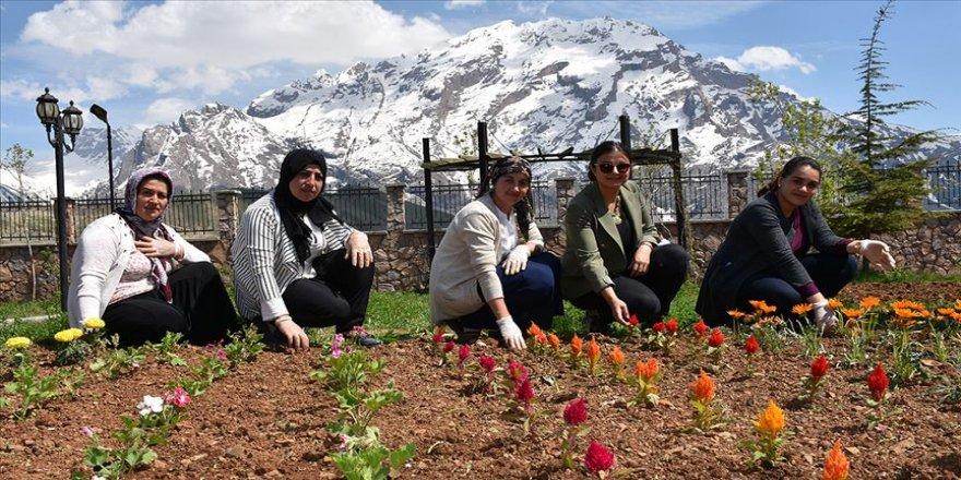 Hakkari'yi 13 kadın süslüyor