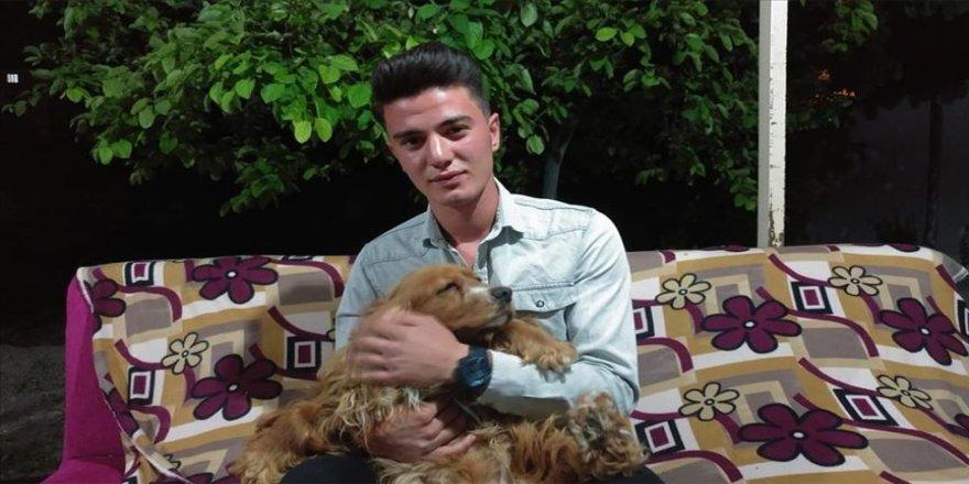 Otomobilin çarptığı köpeğini kalp masajı ile hayata döndürdü