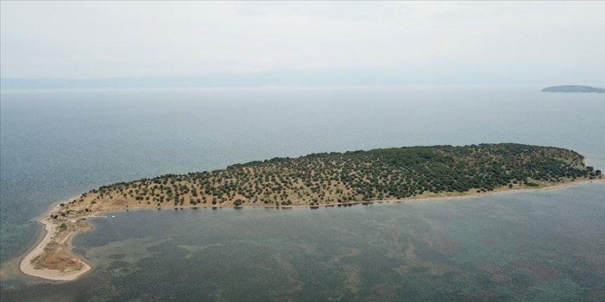 Kuzey Ege'de 105 milyon liraya satılık ada
