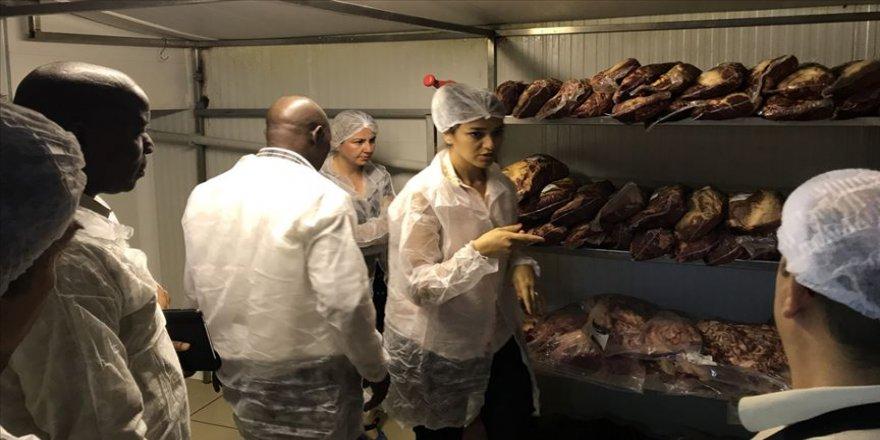 TİKA'dan Gine Hayvancılık Bakanlığı uzmanlarına eğitim