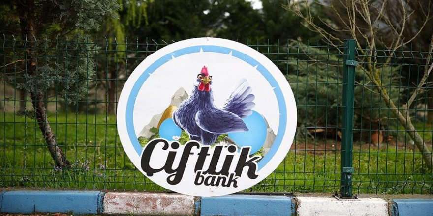 Çiftlik Bank' davasında Mehmet Aydın'ın eşi ifade verdi