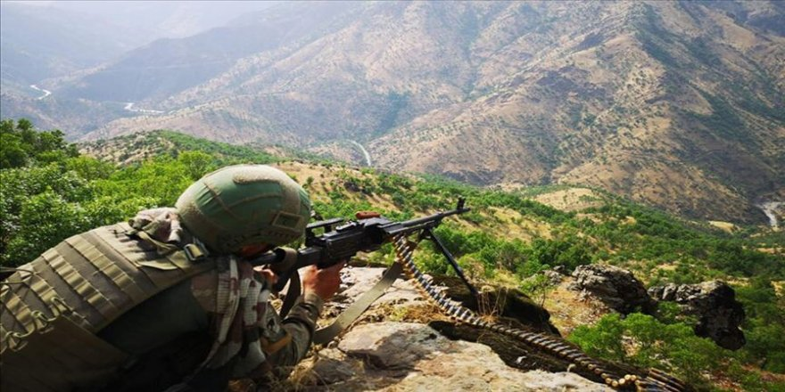 PKK'ya silah ve eleman temin eden 2 terörist yakalandı