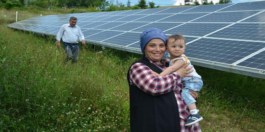Kadın girişimci 'tarlada' elektrik üretiyor