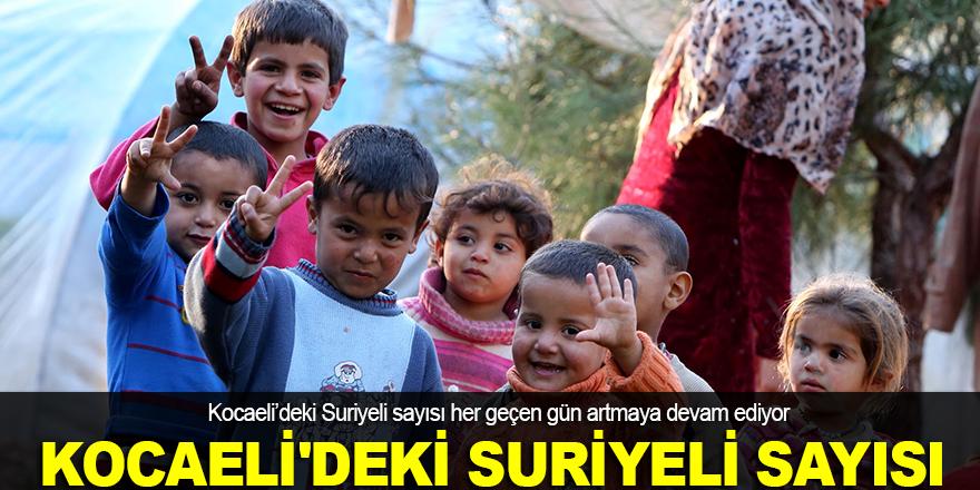 Kocaeli'de Suriyeli sayısı