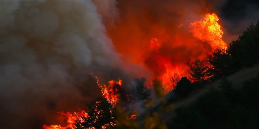 Meteorolojiden orman yangını uyarısı