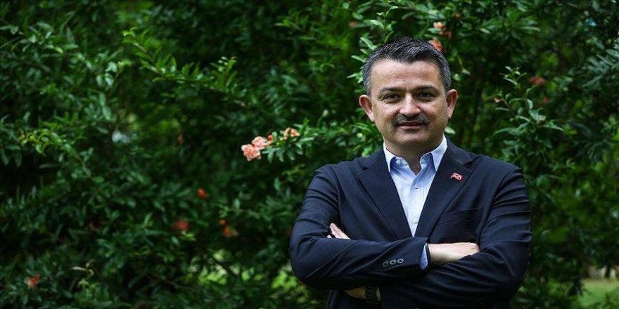 Trabzon'a 'Taşkın Müzesi' kurulacak