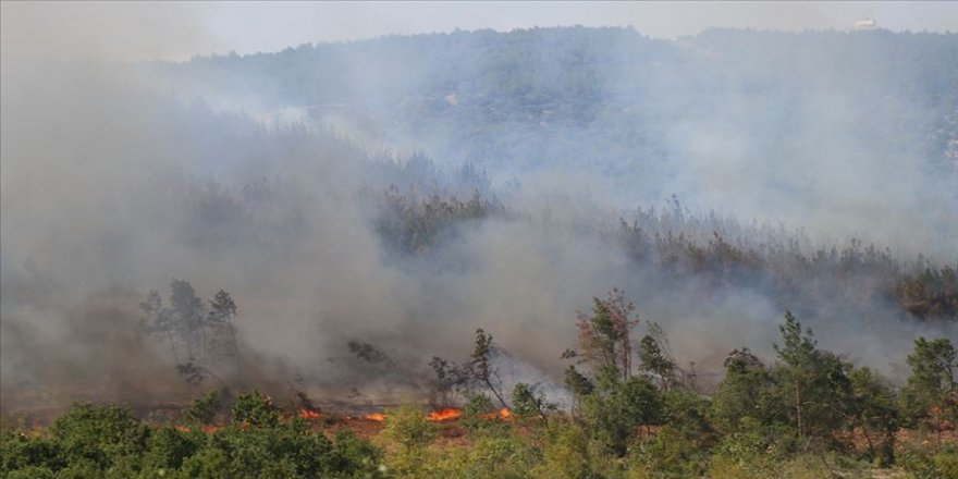 Keşan'daki orman yangını söndürüldü