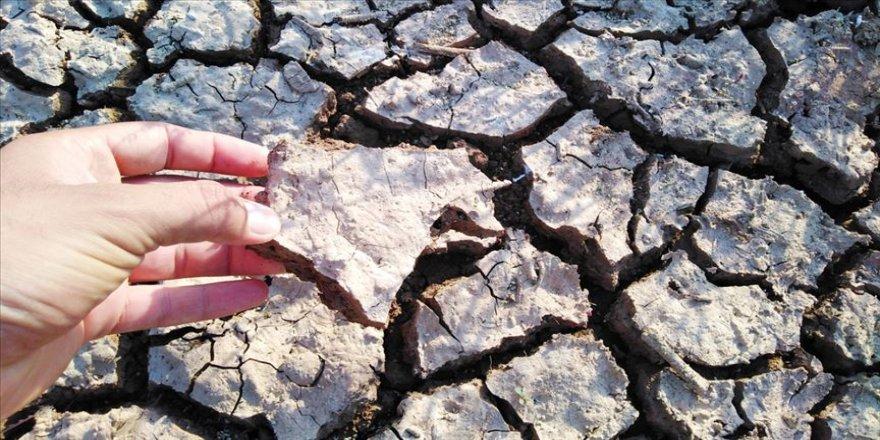 'Vahşi sulama' toprağa ve ürüne zarar veriyor