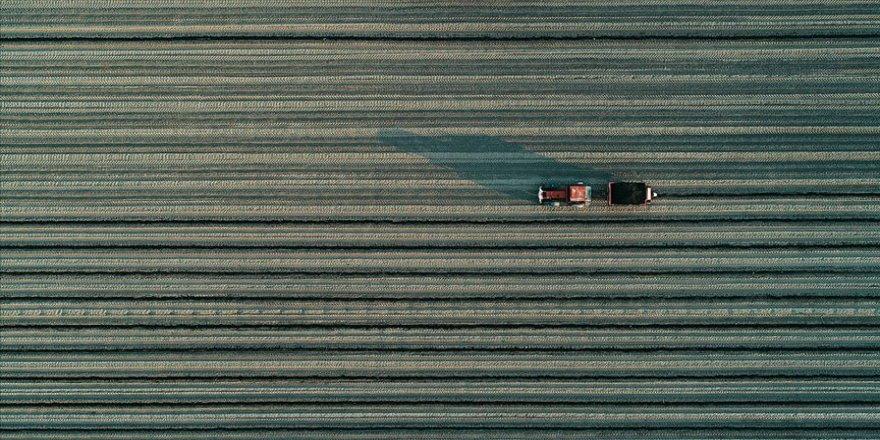 Tarımda 'yerli ve milli teknoloji' seferberliği