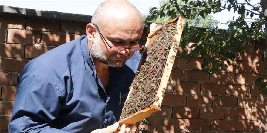 'Sokmayan arılar'la yurt dışına açıldı